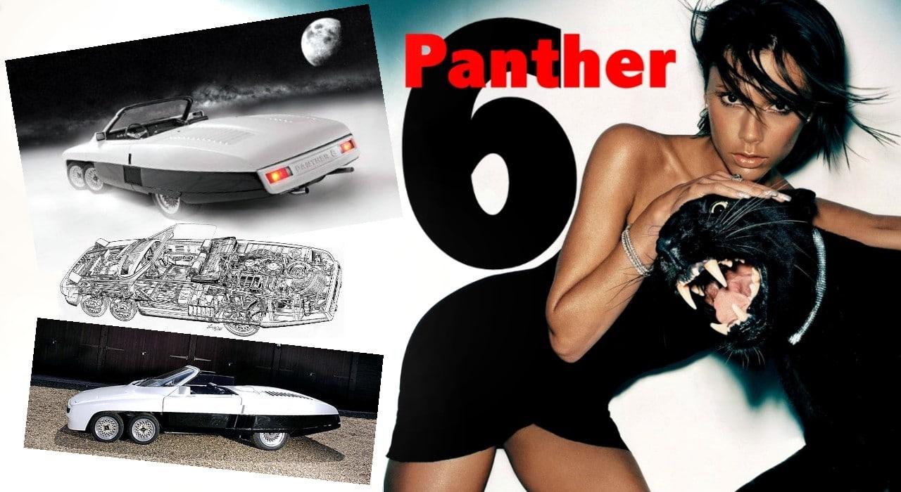 panthersix_000