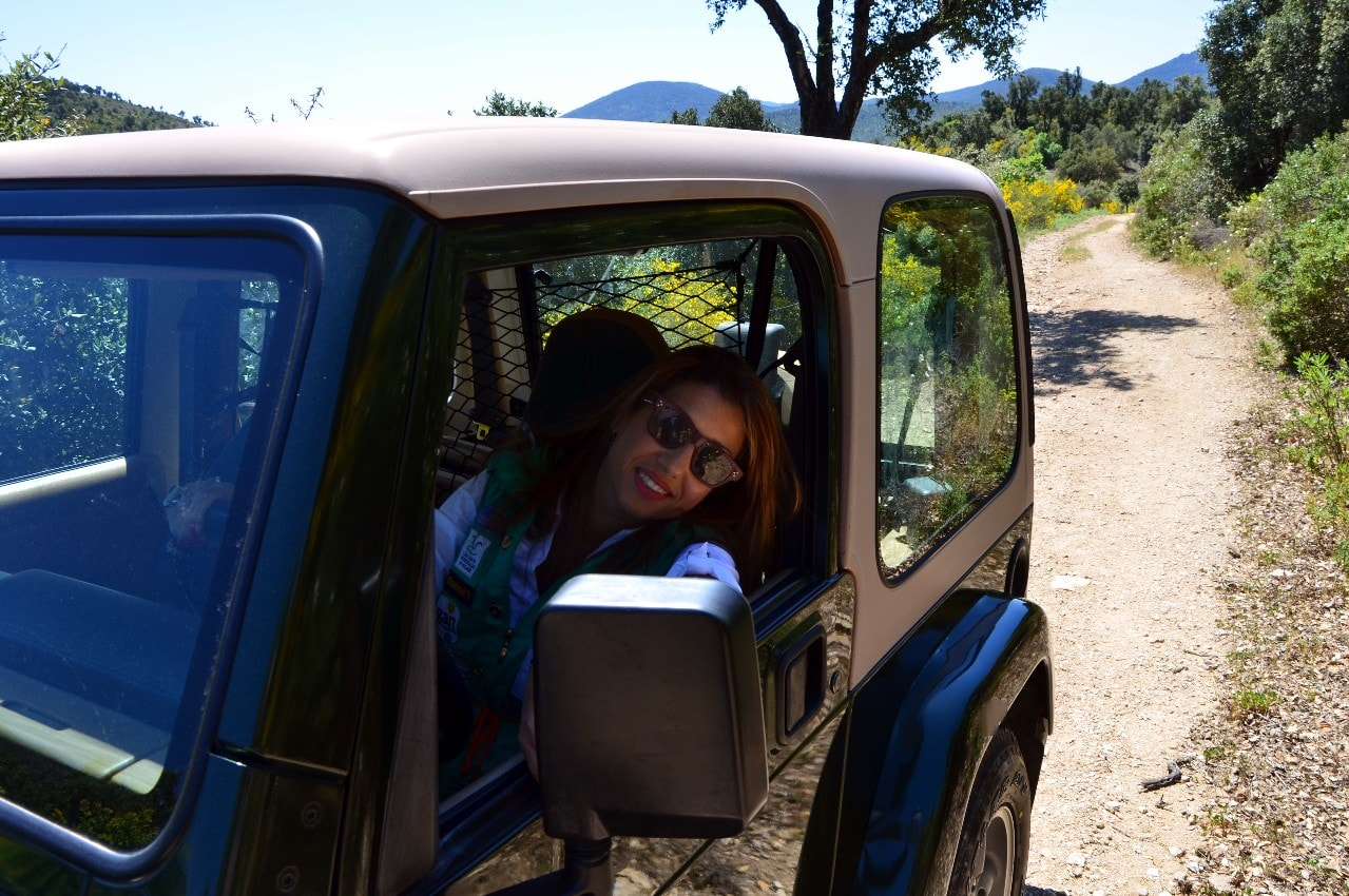 jeep wrangler ii 1997  u2013 4l0 6cyl auto 177 cv u2026  u2013 gatsby online