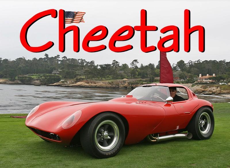 a_cheetah01